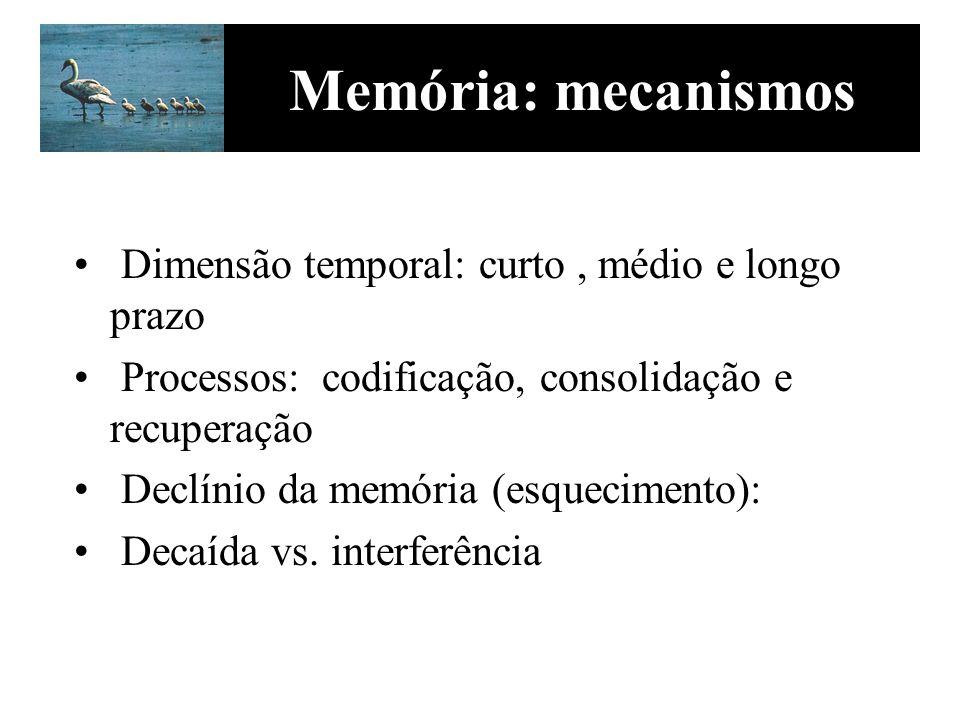 Memória: mecanismos Dimensão temporal: curto , médio e longo prazo