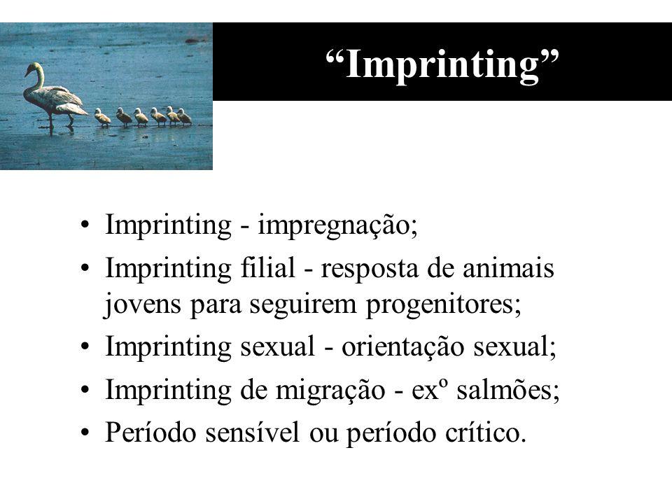 Imprinting Imprinting - impregnação;