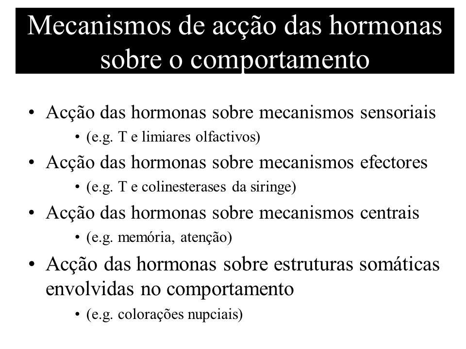 Mecanismos de acção das hormonas sobre o comportamento