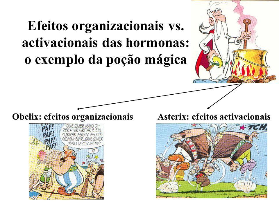 Efeitos organizacionais vs