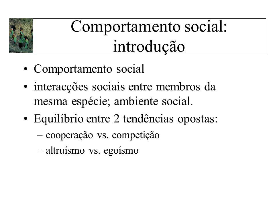 Comportamento social: introdução