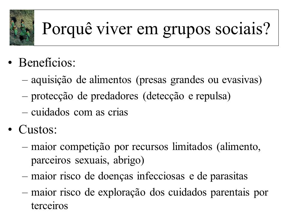 Porquê viver em grupos sociais