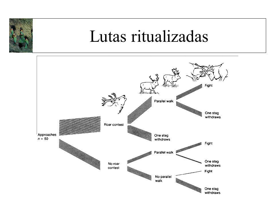Lutas ritualizadas