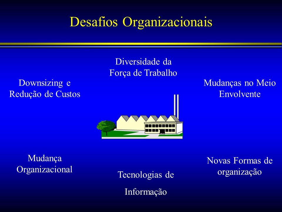 Desafios Organizacionais