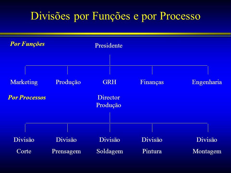 Divisões por Funções e por Processo