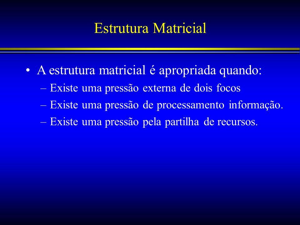 Estrutura Matricial A estrutura matricial é apropriada quando: