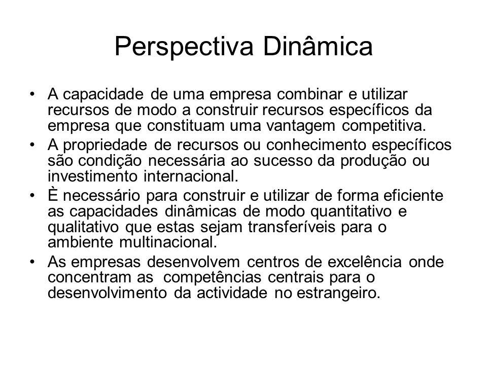 Perspectiva Dinâmica