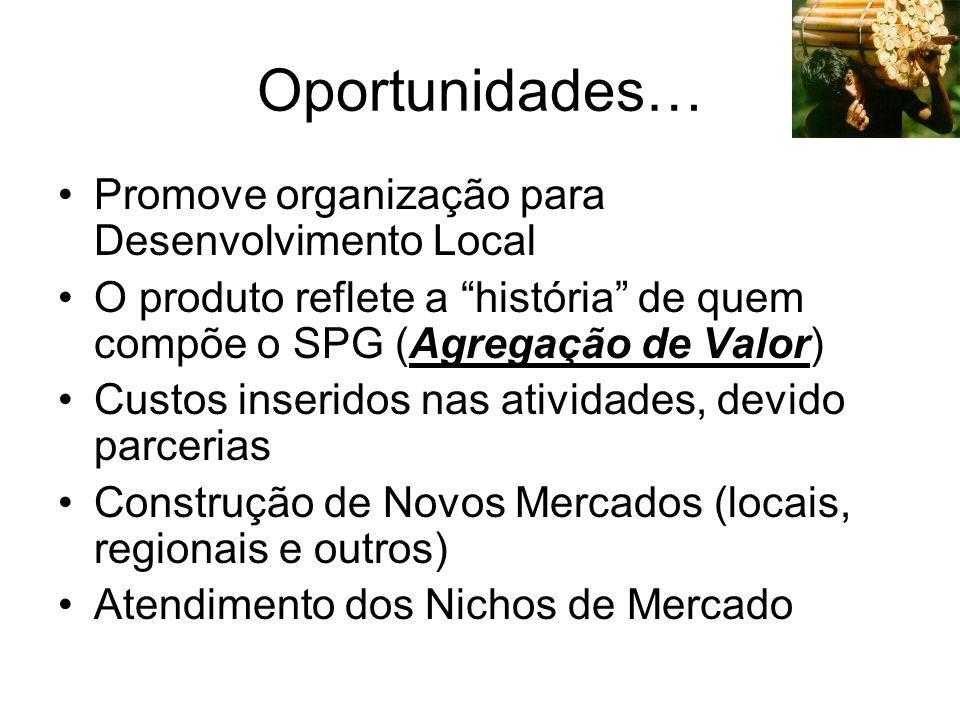 Oportunidades… Promove organização para Desenvolvimento Local