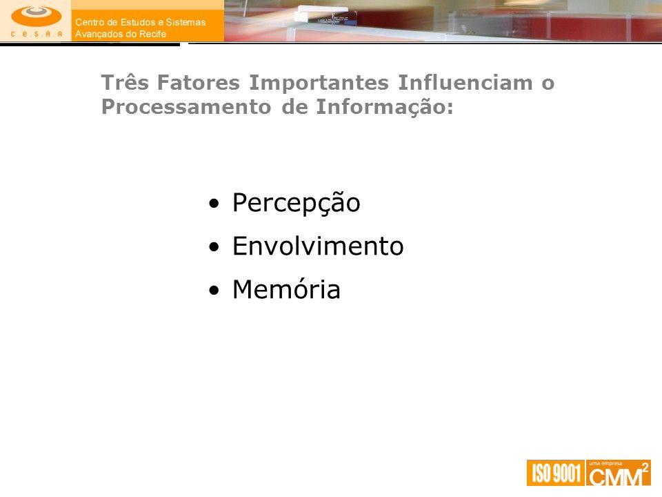 Três Fatores Importantes Influenciam o Processamento de Informação: