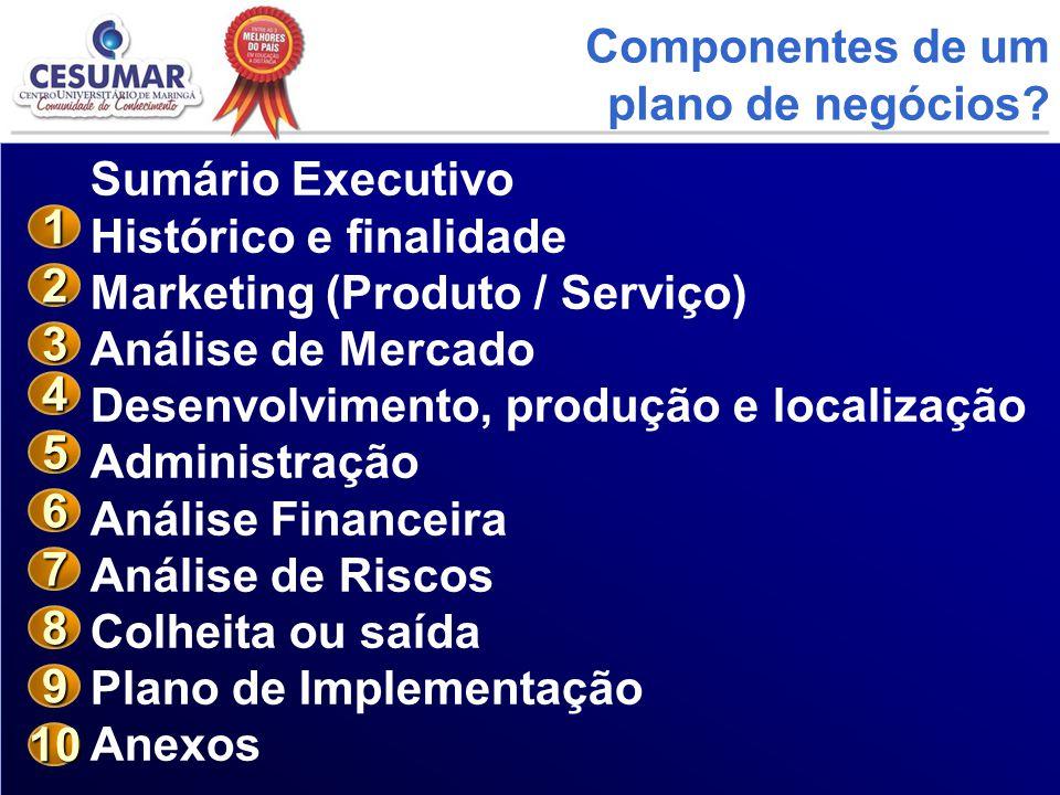Componentes de um plano de negócios Sumário Executivo. Histórico e finalidade. Marketing (Produto / Serviço)