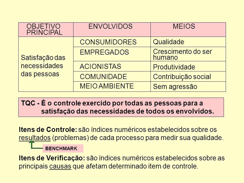 OBJETIVO ENVOLVIDOS MEIOS PRINCIPAL