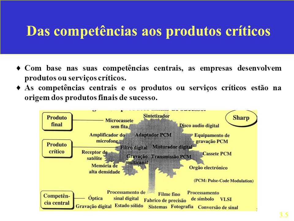 Das competências aos produtos críticos