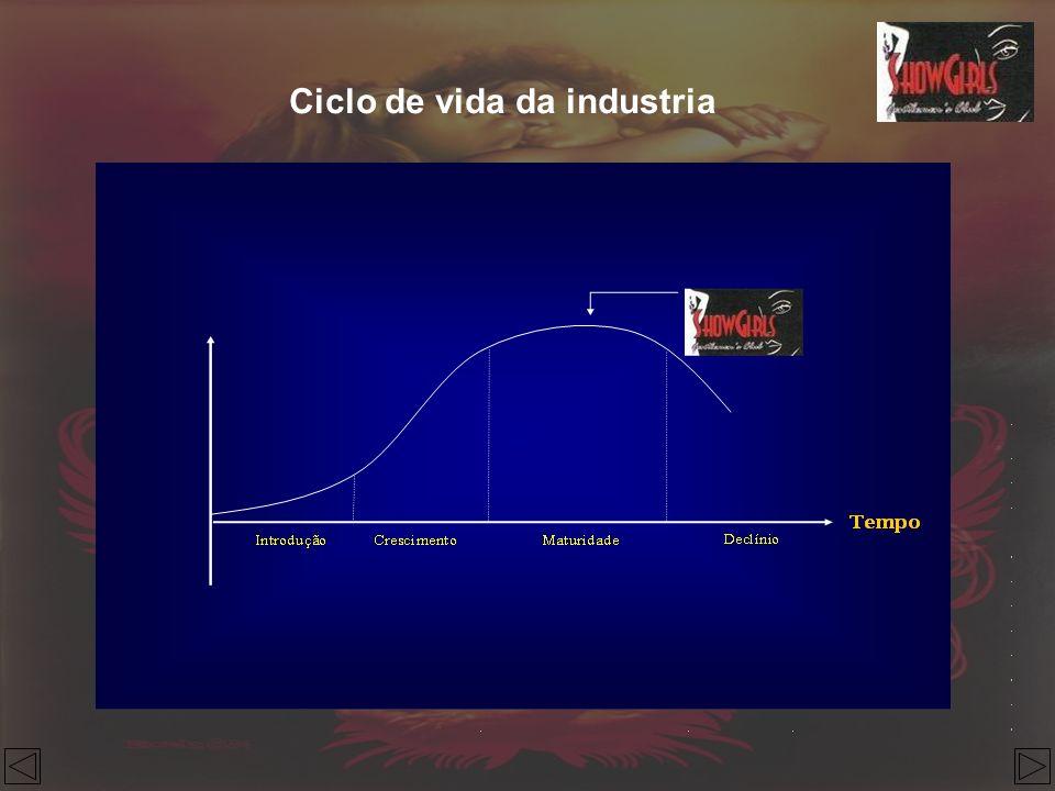 Ciclo de vida da industria