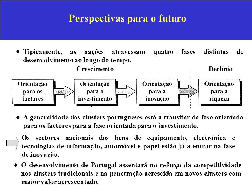 Perspectivas para o futuro