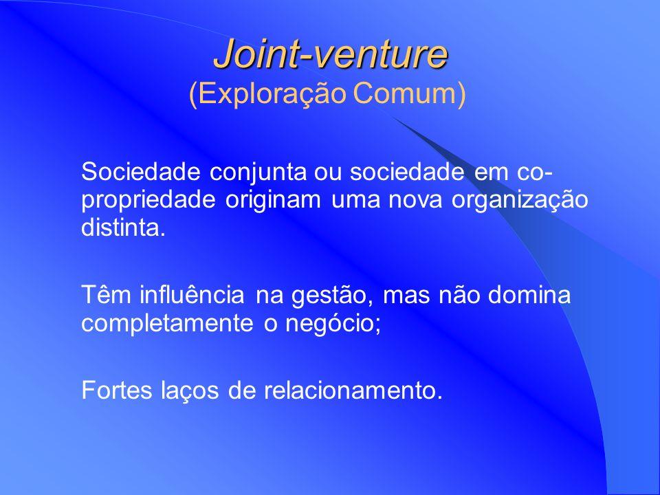 Joint-venture (Exploração Comum)