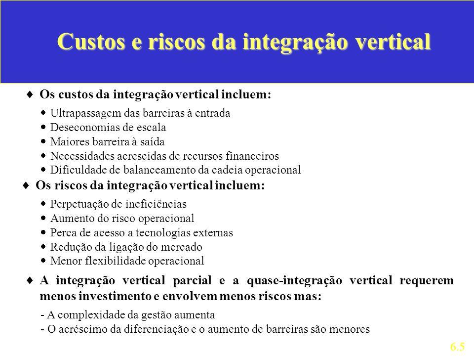 Custos e riscos da integração vertical
