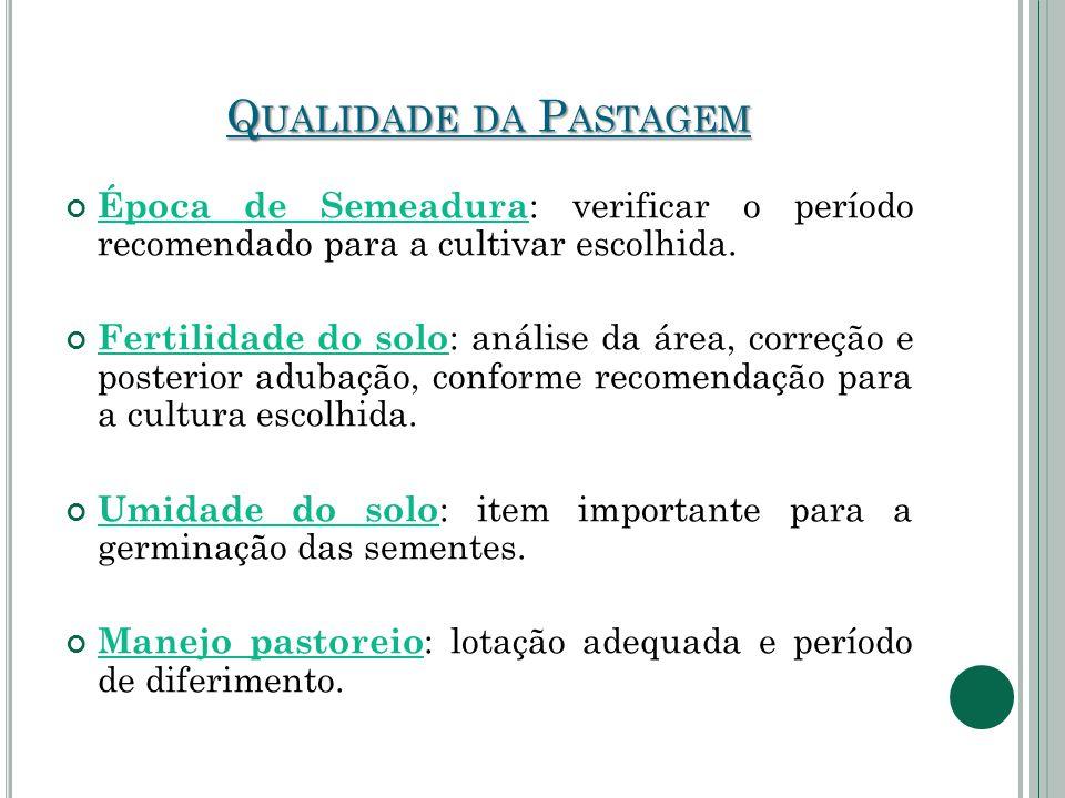 Qualidade da Pastagem Época de Semeadura: verificar o período recomendado para a cultivar escolhida.