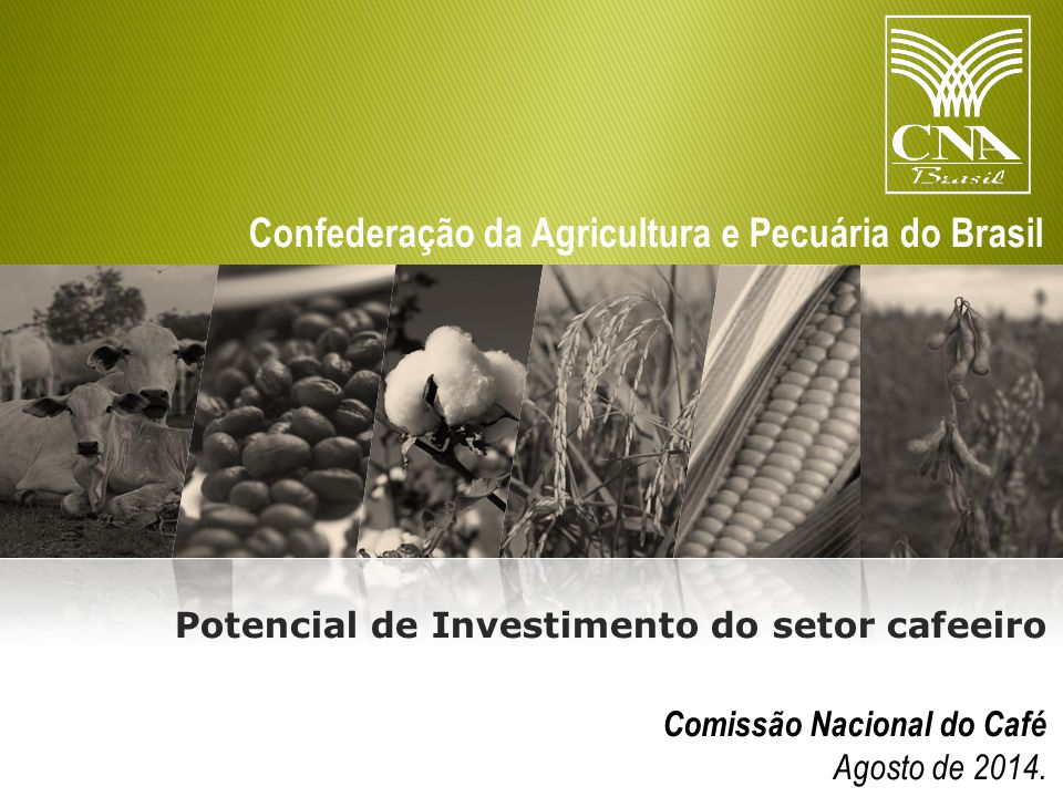 Potencial de Investimento do setor cafeeiro