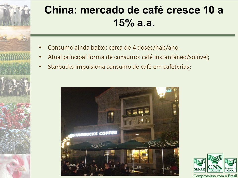 China: mercado de café cresce 10 a 15% a.a.