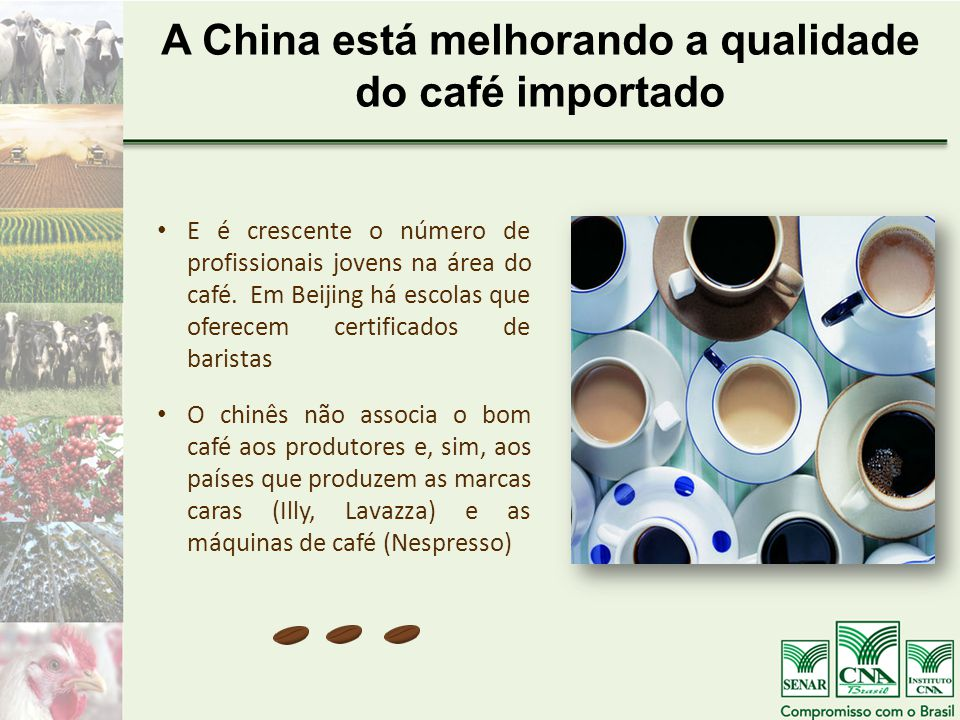 A China está melhorando a qualidade do café importado