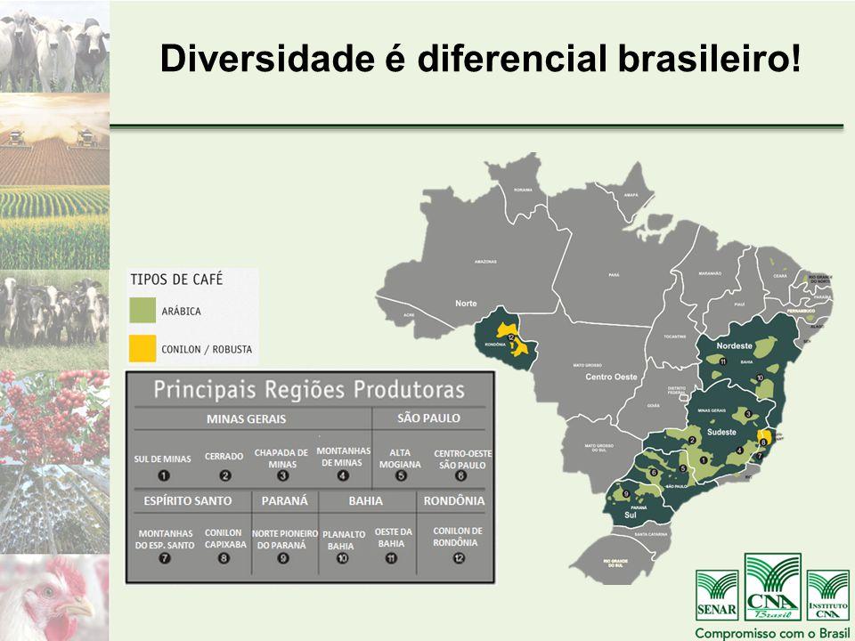 Diversidade é diferencial brasileiro!