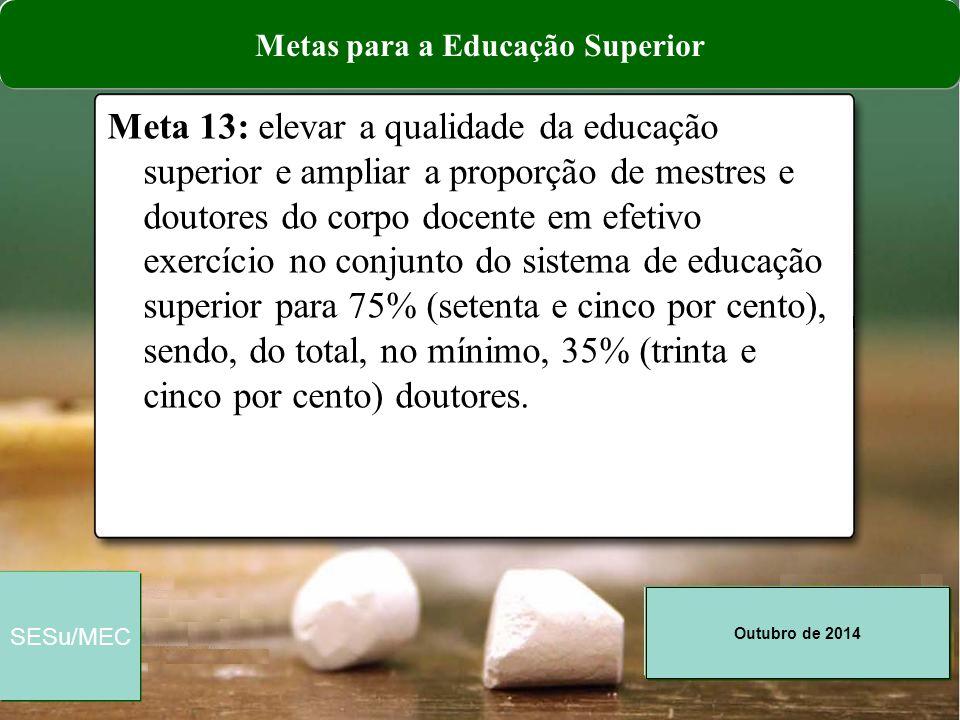 Metas para a Educação Superior