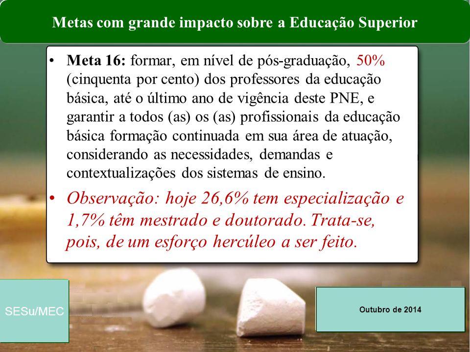Metas com grande impacto sobre a Educação Superior