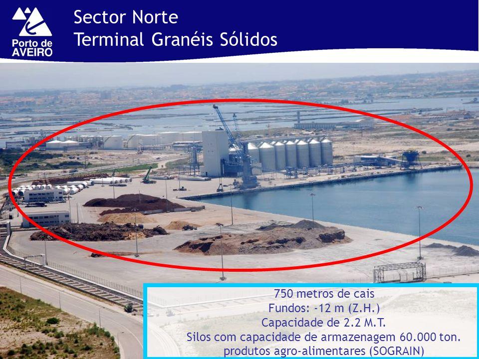 Sector Norte Terminal Granéis Sólidos