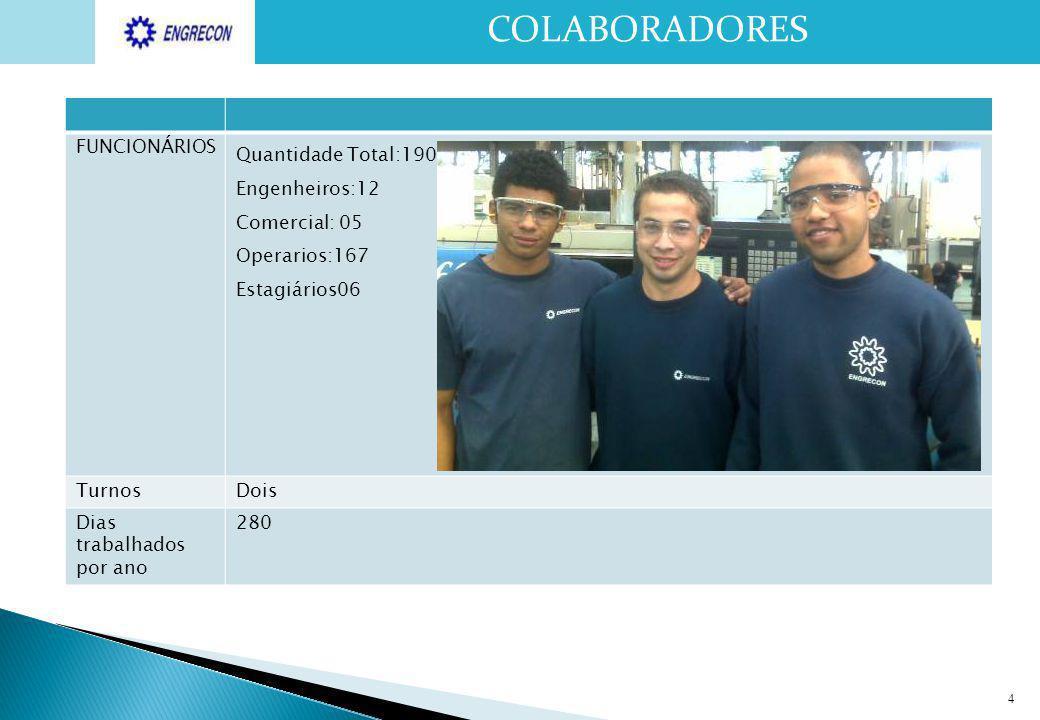 COLABORADORES FUNCIONÁRIOS Quantidade Total:190 Engenheiros:12