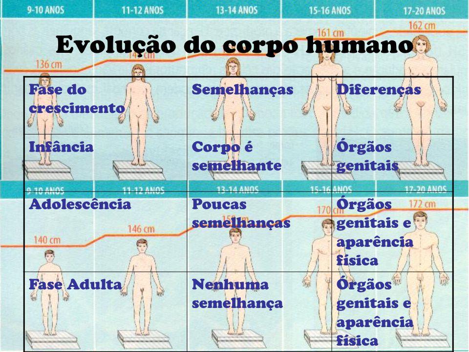 Evolução do corpo humano
