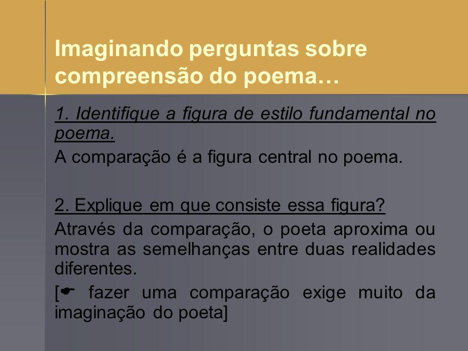 Imaginando perguntas sobre compreensão do poema…