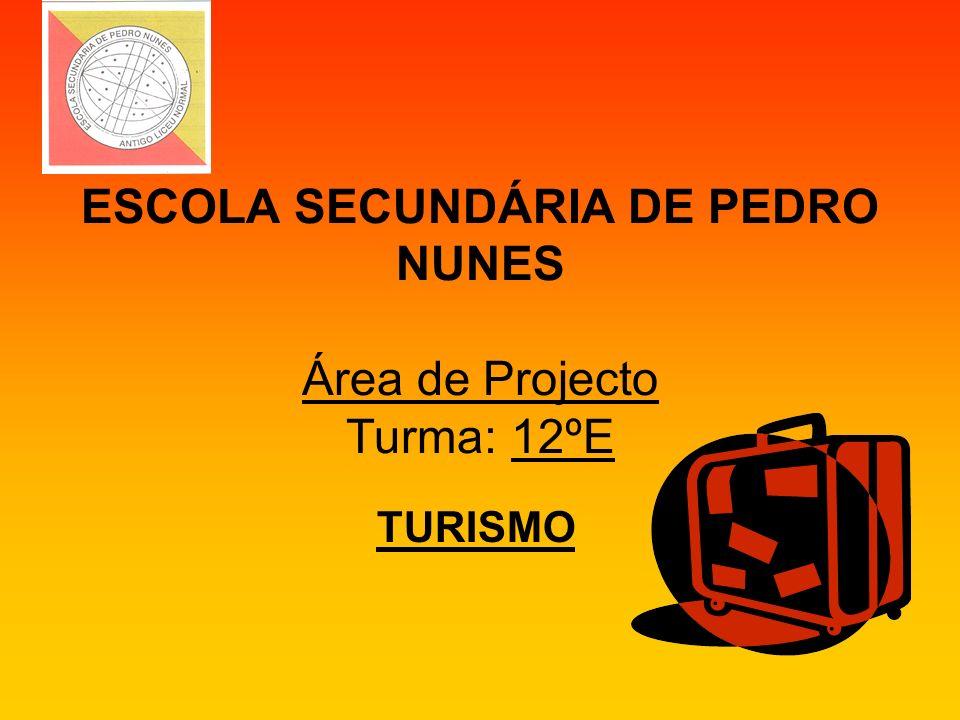 ESCOLA SECUNDÁRIA DE PEDRO NUNES Área de Projecto Turma: 12ºE