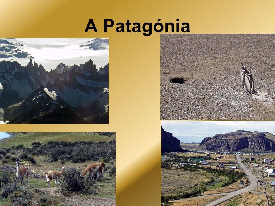 A Patagónia