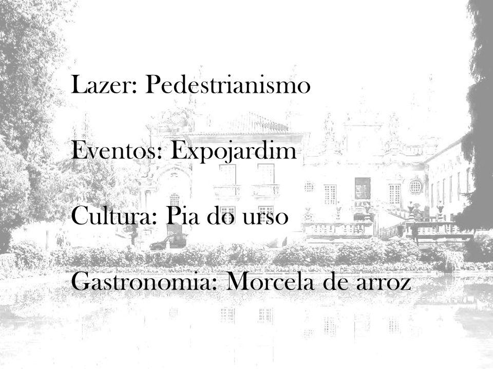 Lazer: Pedestrianismo