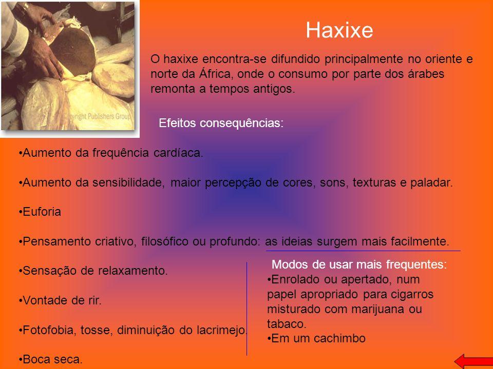Haxixe O haxixe encontra-se difundido principalmente no oriente e norte da África, onde o consumo por parte dos árabes remonta a tempos antigos.