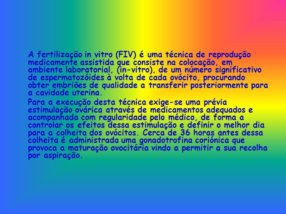 A fertilização in vitro (FIV) é uma técnica de reprodução medicamente assistida que consiste na colocação, em ambiente laboratorial, (in-vitro), de um número significativo de espermatozóides à volta de cada ovócito, procurando obter embriões de qualidade a transferir posteriormente para a cavidade uterina.