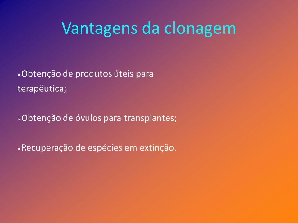 Vantagens da clonagem Obtenção de produtos úteis para terapêutica;
