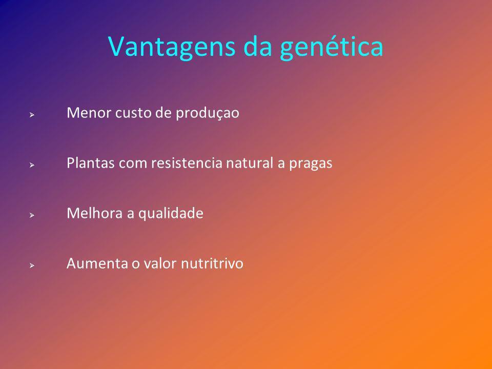 Vantagens da genética Menor custo de produçao