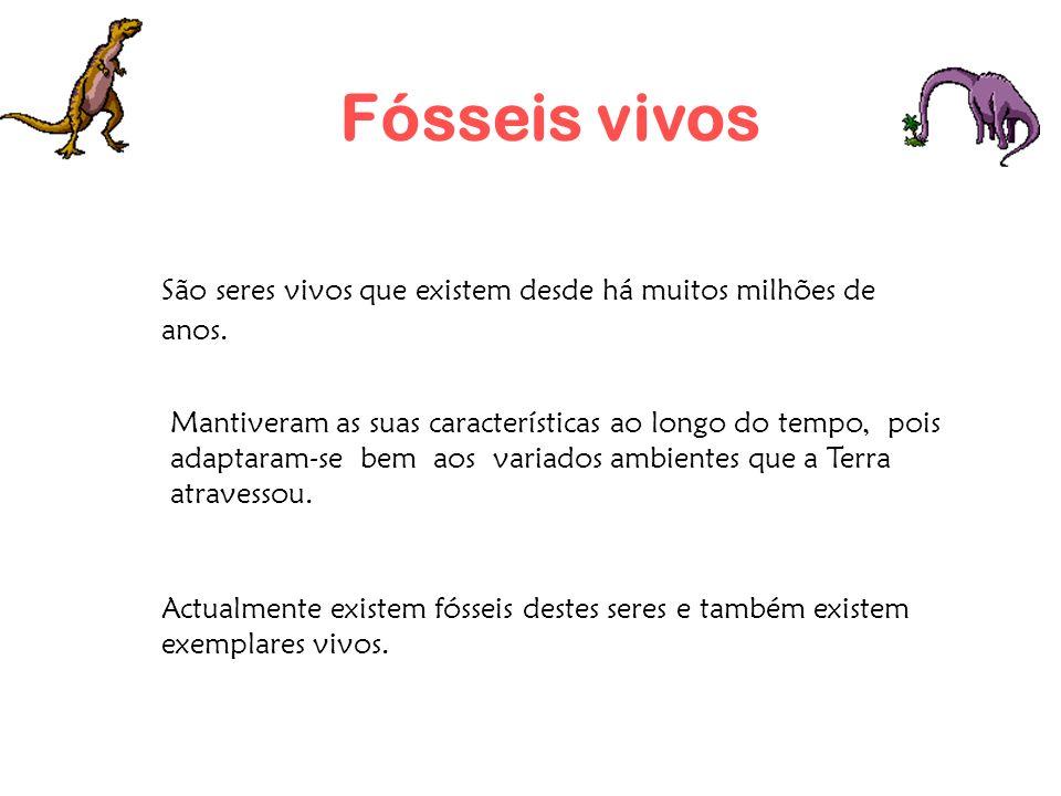 Fósseis vivosSão seres vivos que existem desde há muitos milhões de anos.