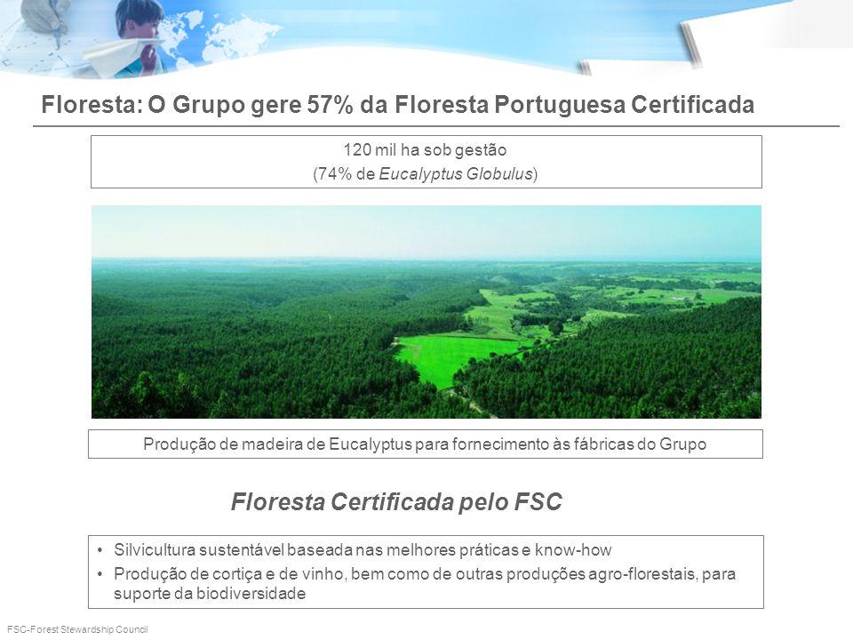 Floresta Certificada pelo FSC