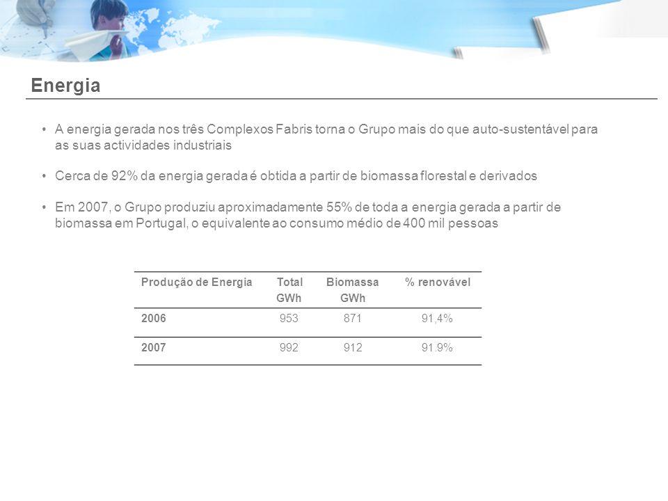 Energia A energia gerada nos três Complexos Fabris torna o Grupo mais do que auto-sustentável para as suas actividades industriais.