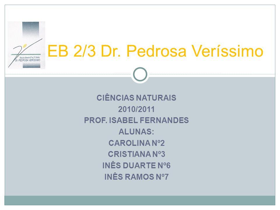 EB 2/3 Dr. Pedrosa Veríssimo