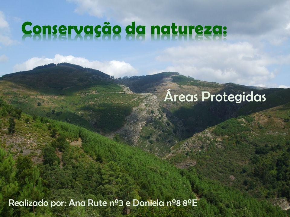 Conservação da natureza: