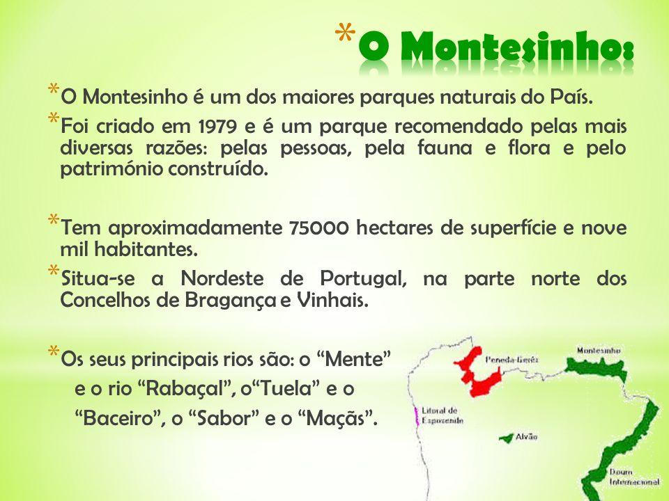 O Montesinho: O Montesinho é um dos maiores parques naturais do País.