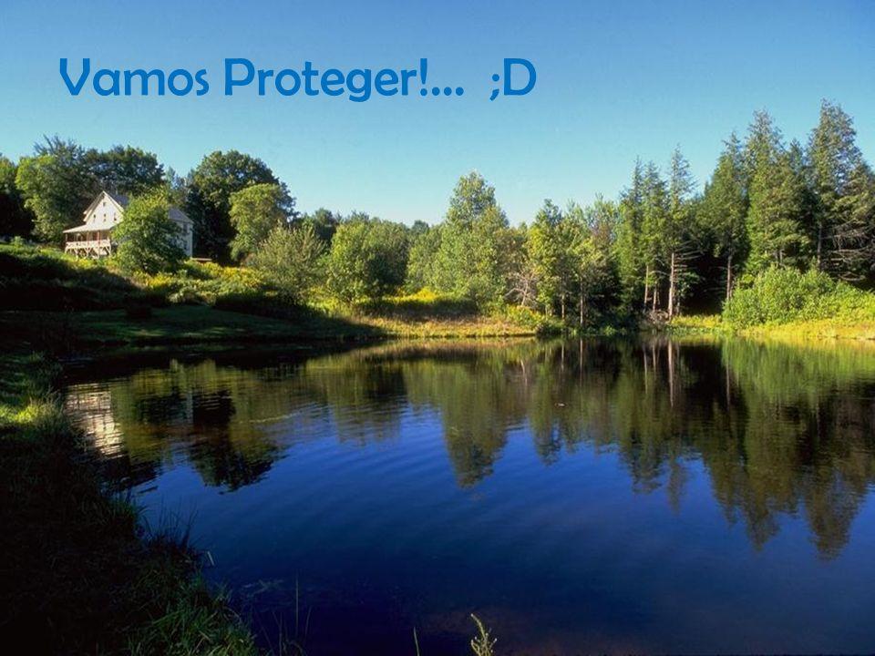 Vamos Proteger!... ;D