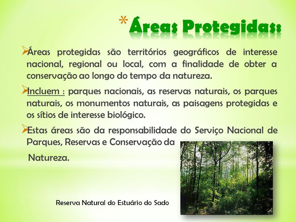 Áreas Protegidas: