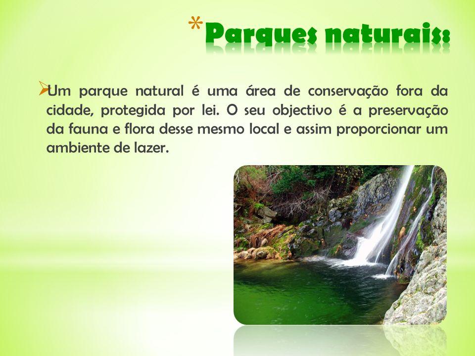 Parques naturais: