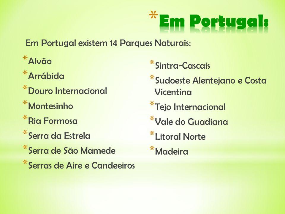 Em Portugal: Em Portugal existem 14 Parques Naturais: Alvão