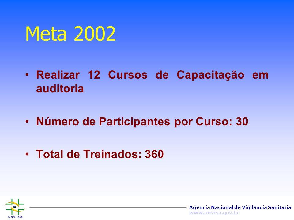 Meta 2002 Realizar 12 Cursos de Capacitação em auditoria