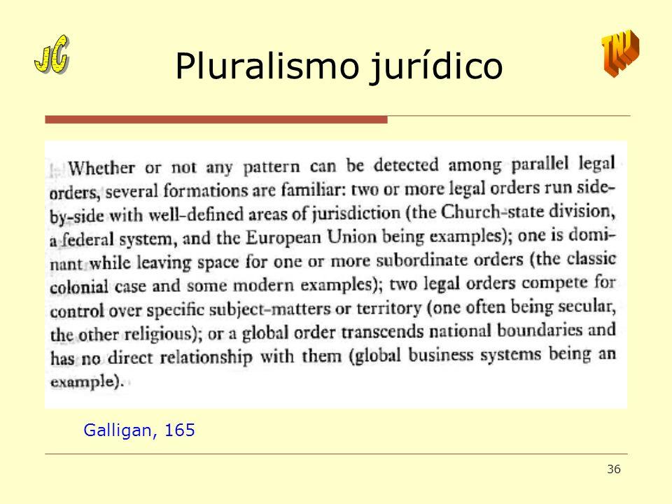 Pluralismo jurídico JC TNJ Galligan, 165